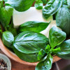 Basil Butter - Life's Little Pleasures