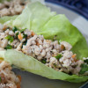 Asian Turkey Lettuce Wraps & Fried Rice